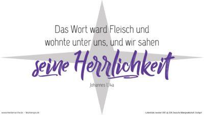 Und das Wort ward Fleisch und wohnte unter uns, und wir sahen seine Herrlichkeit, eine Herrlichkeit als des eingeborenen Sohnes vom Vater, voller Gnade und Wahrheit. (Wochenspruch, Christfest)