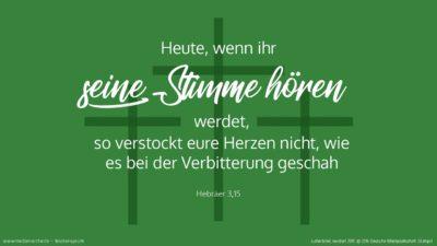 Solange es heißt (Psalm 95,7-8): »Heute, wenn ihr seine Stimme hört, so verstockt eure Herzen nicht, wie es bei der Verbitterung geschah.« (Wochenspruch, Sexagesimä)