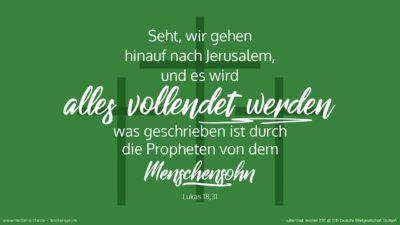 Er nahm aber zu sich die Zwölf und sprach zu ihnen: Seht, wir gehen hinauf nach Jerusalem, und es wird alles vollendet werden, was geschrieben ist durch die Propheten von dem Menschensohn. (Wochenspruch, Estomihi)