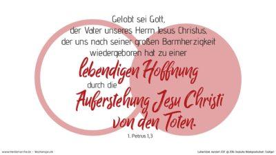 Gelobt sei Gott, der Vater unseres Herrn Jesus Christus, der uns nach seiner großen Barmherzigkeit wiedergeboren hat zu einer lebendigen Hoffnung durch die Auferstehung Jesu Christi von den Toten. (Wochenspruch, Quasimodogeniti)
