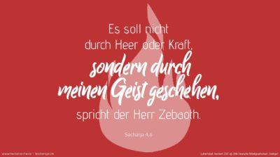 Und er antwortete und sprach zu mir: Das ist das Wort des HERRN an Serubbabel: Es soll nicht durch Heer oder Kraft, sondern durch meinen Geist geschehen, spricht der HERR Zebaoth. (Wochenspruch, Pfingstsonntag, Pfingstmontag)