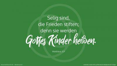 Selig sind, die Frieden stiften; denn sie werden Gottes Kinder heißen. (Wochenspruch, drittletzter Sonntag des Kirchenjahres)