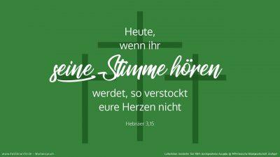 Solange es heißt (Psalm 95,7-8): »Heute, wenn ihr seine Stimme hört, so verstockt eure Herzen nicht, wie es bei der Verbitterung geschah.« (Wochenspruch Sextagesimä)