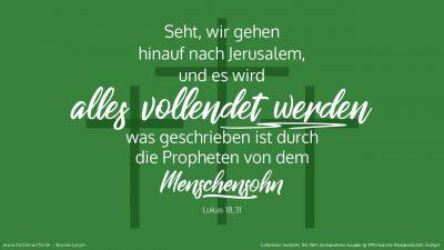 Er nahm aber zu sich die Zwölf und sprach zu ihnen: Seht, wir gehen hinauf nach Jerusalem, und es wird alles vollendet werden, was geschrieben ist durch die Propheten von dem Menschensohn. (Wochenspruch Estomihi)
