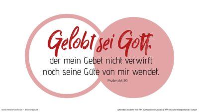 Gelobt sei Gott, der mein Gebet nicht verwirft noch seine Güte von mir wendet.