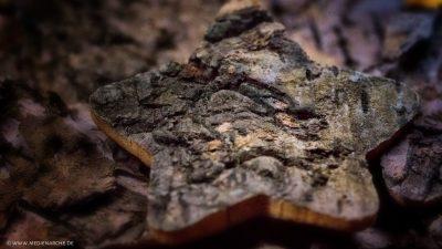 Großaufnahme von einem Stern, der aus Baumrinde geschnitzt ist, inmitten von weiterer hölzernen Struktur.