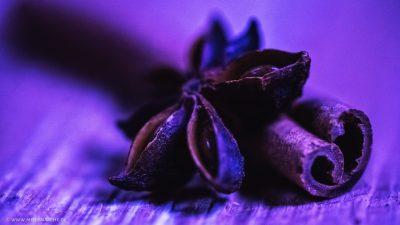 Großaufnahme von einem Sternanis und einer Zimtstange, in einem violetten Licht.