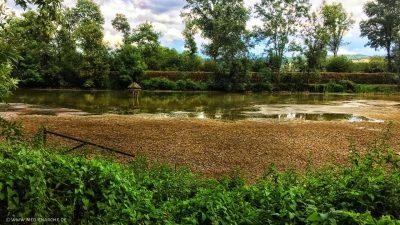 Ein See, oder was davon übrig ist, da ein großer Teil schon vertrocknet ist, das Ufer grünt aber noch.