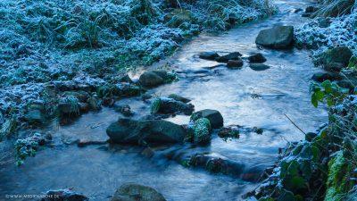 Ein kleiner Bachlauf an dessen Ufer vereistes Moos und anderen Pflanzen zwischen Steinen wachsen.
