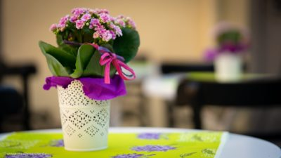 Eine dekorierte Topfblume mit Schleifchen.