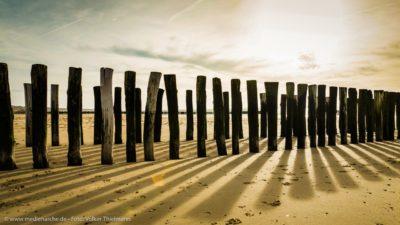 Eine Holzbuhne am Strand, die im Licht der Morgensonne lange Schatten wirft.